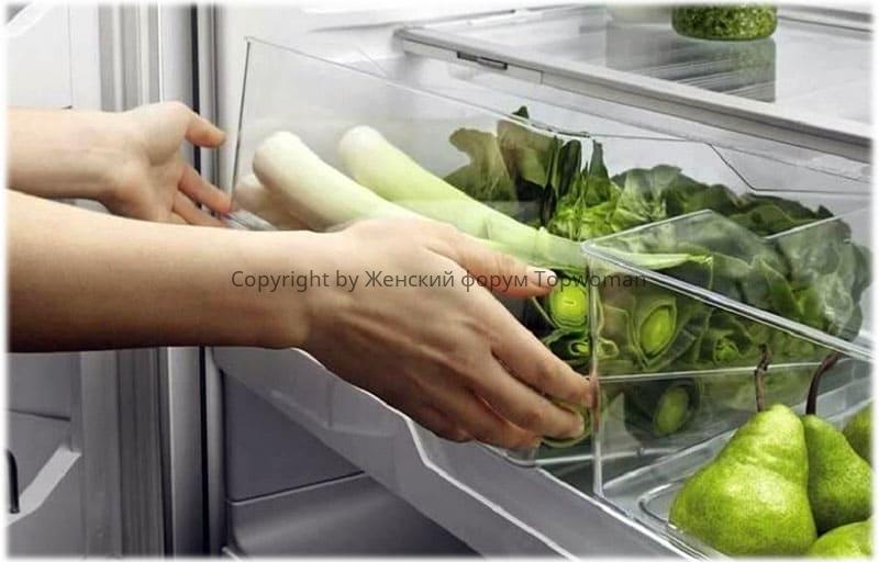 Как правильно хранить зелень в холодильнике, долго, свежей