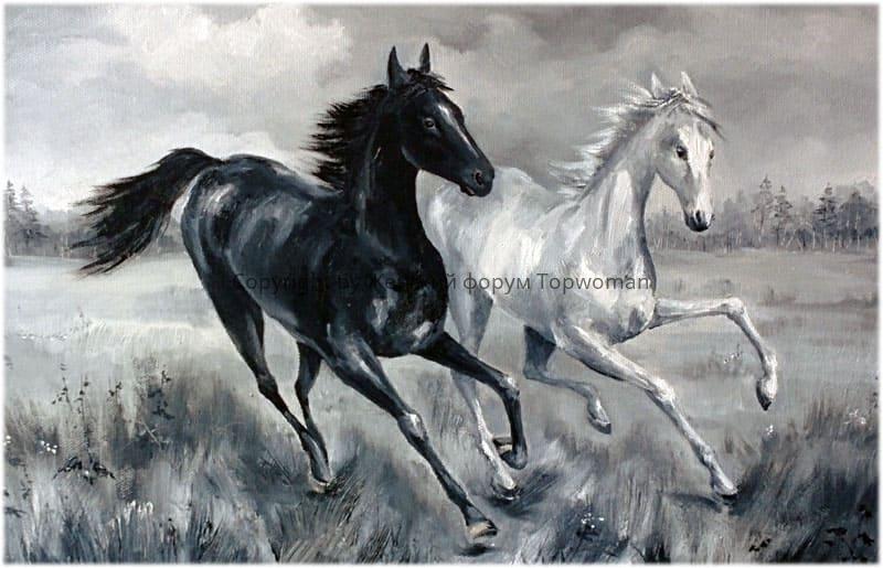 Снится, как чёрная лошадь превращается в светлую