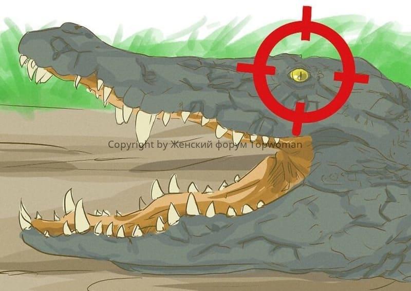 К чему снится крокодил женщине который нападает