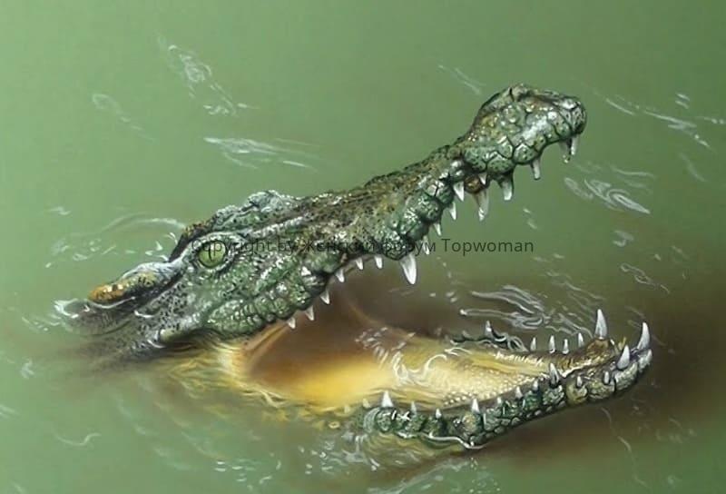 К чему снится крокодил женщине в воде