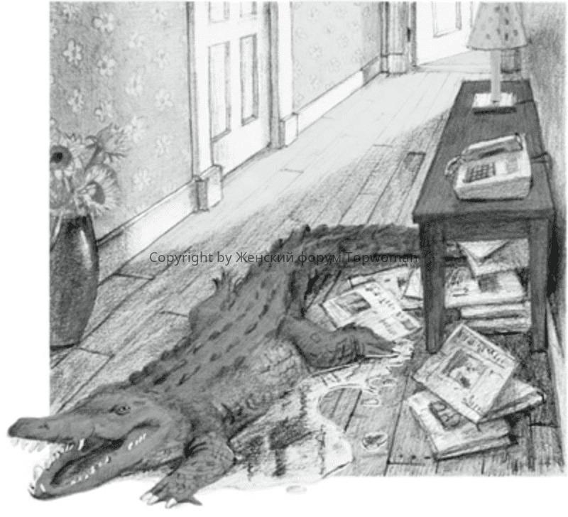 К чему снятся крокодилы женщине в квартире