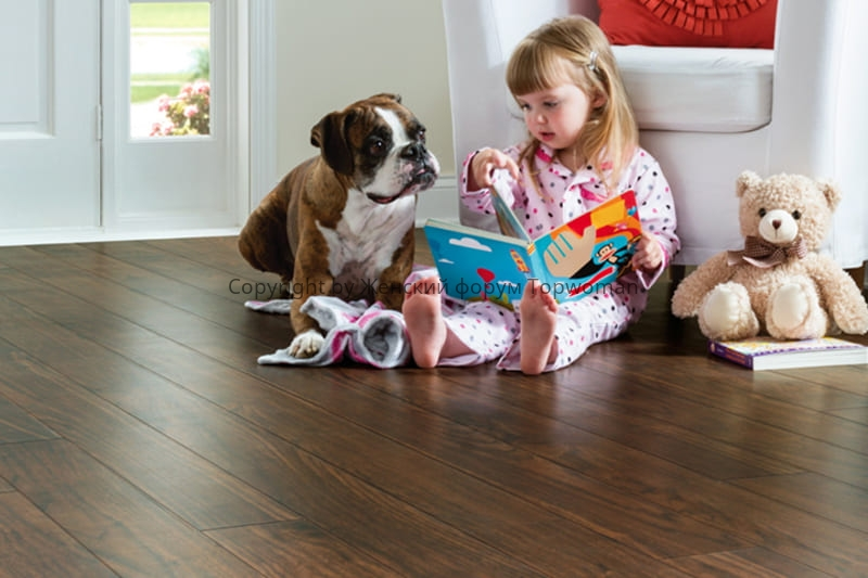 Какую собаку купить для ребёнка