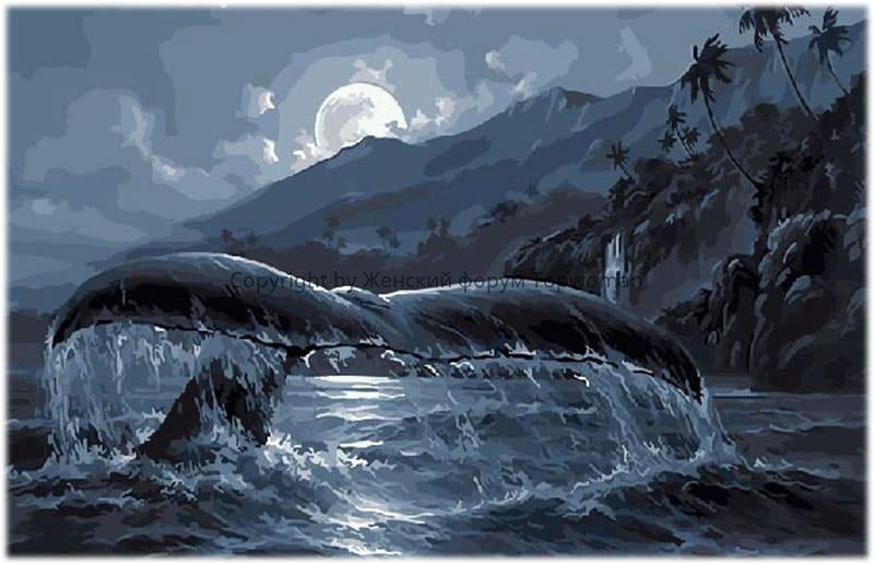 кит бьёт хвостом по воде