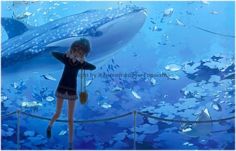 К чему снится кит в воде женщине
