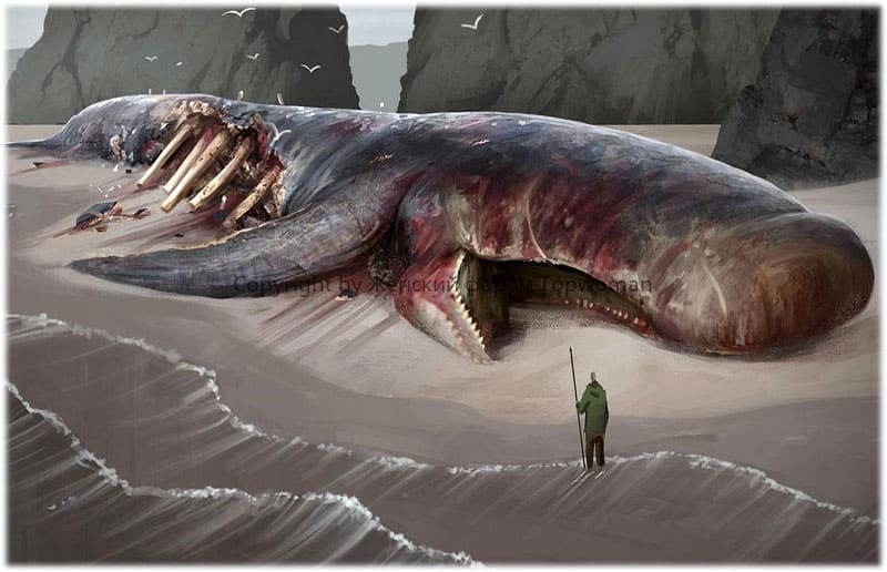 убили кита