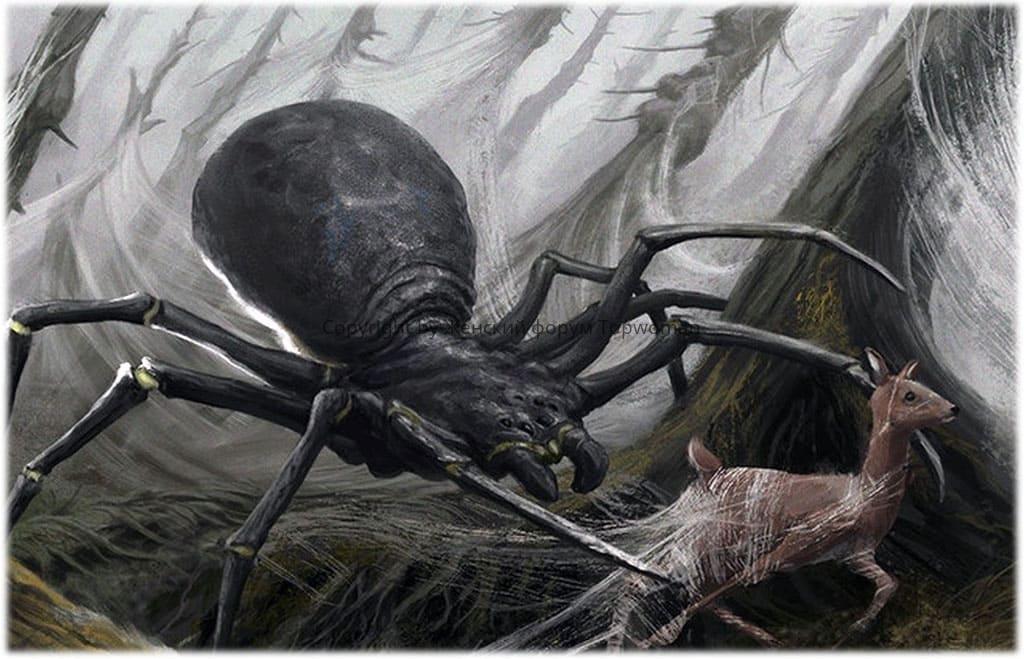 К чему снится паук большой с паутиной?