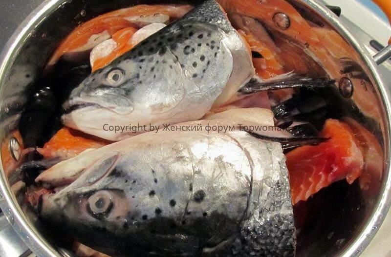 Как приготовить суп-пюре из лосося
