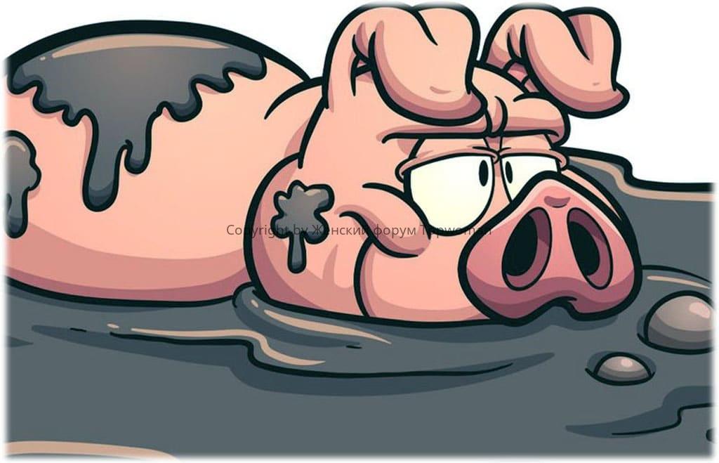 К чему снятся свиньи в грязи
