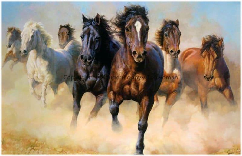 снится табун коричневых лошадей