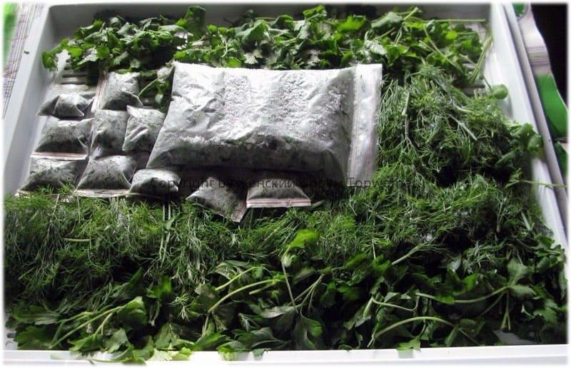 Как дольше сохранить зелень свежей в холодильнике