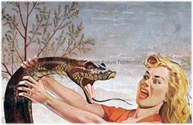 К чему снится нападающая змея женщине