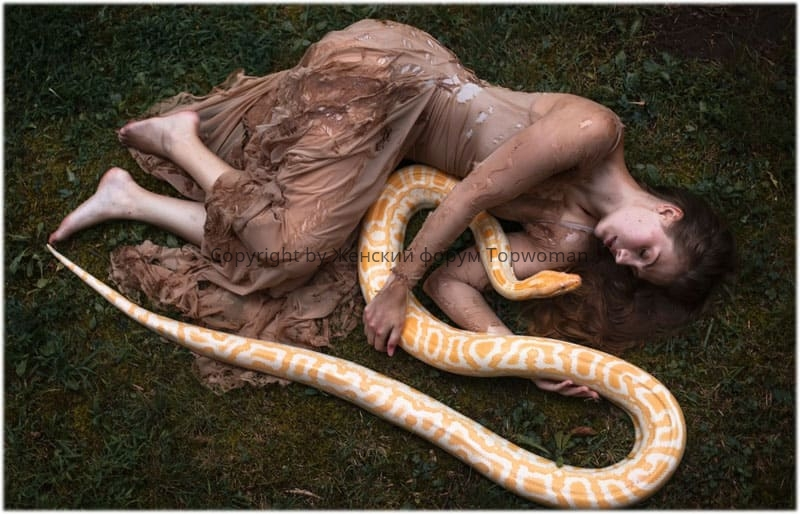 К чему снятся змеи во сне женщине